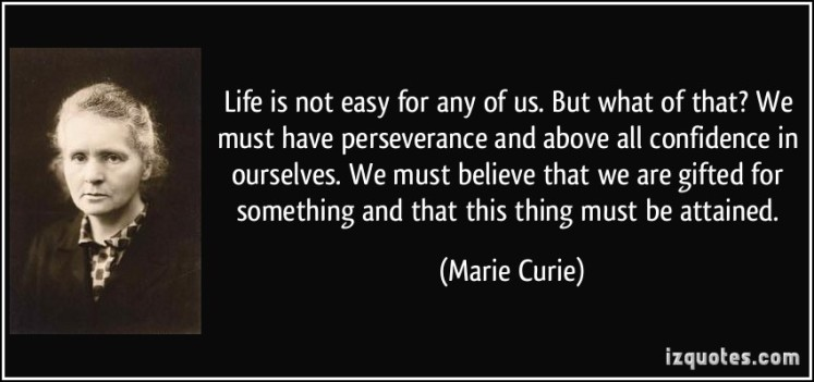 3293179-life-perseverance-quote